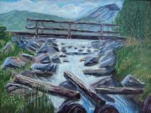 Bridge Over Troubled Logs, #16035, Acrylic, 12x16
