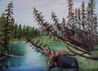 Visitor to Vermillion Lakes Creek, #15045, $1300, Acrylic, 18x24